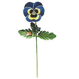 Blüte  -  Stiefmütterchen groß  -  60cm